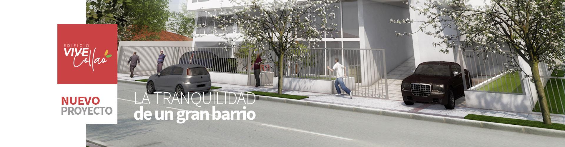Banner_ViveCollao02